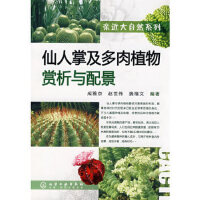 仙人掌及多肉植物赏析与配景