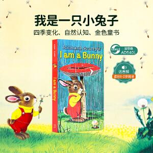 顺丰包邮进口英文原版正版 I Am a Bunny 我是小兔子 Little Golden Book金色童书系列纸板书Richard Scarry斯凯瑞儿童英语启蒙早教绘本0-2-3-4岁春夏秋冬四季