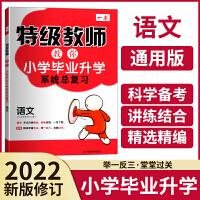 2021版一本特级教师语文小学毕业升学系统总复习部编版讲练结合助力升学