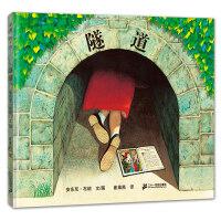 隧道(2018版,安东尼・布朗作品)