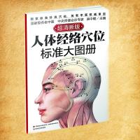 人体经络穴位标准大图册(超清晰版) 吴中朝
