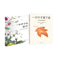 一片叶子落下来+一粒种子的旅行 全2册
