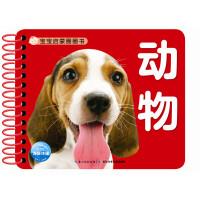 宝宝启蒙圈圈书:动物