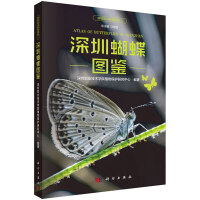 深圳蝴蝶图鉴