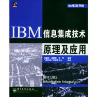 IBM信息集成技术原理及应用