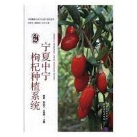 ��夏中��枸杞�N植系�y 梁勇,�h�c文,王海�s 9787109227774
