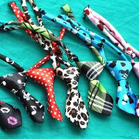 【支持礼品卡】宠物挂饰 可爱领结 领带 泰迪狗狗饰品猫咪项链项圈 彩色配饰领带t4l