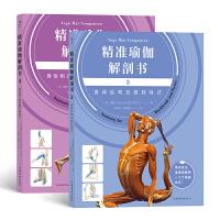精准瑜伽解剖书套装:身体后弯及扭转体式+身体倒立及手臂平衡体式(套装共两册)