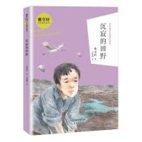 曹文轩金色童年系列・沉寂的田野
