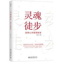 【XSM】 灵魂徒步――阳明心学管理智慧 李安 北京大学出版社 9787301295120