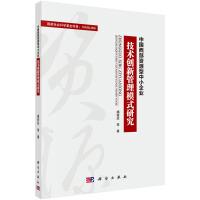 中国西部资源型中小企业技术创新管理模式研究
