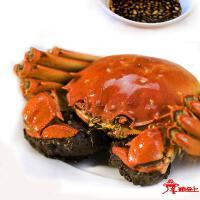 阳澄湖大闸蟹母蟹2.5两(实物)