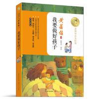 我要做好孩子-名师导读美绘版 黄蓓佳 9787535494849