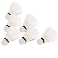 得力风行F2208羽毛球 耐打羽毛球 得力体育用品(白色)(12只/筒)