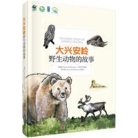 大兴安岭野生动物的故事 马敬能,卢和芬 9787030576149睿智启图书