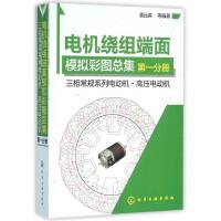 电机绕组端面模拟彩图总集(***分册三相常规系列电动机高压电动机)