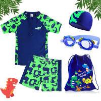 儿童泳衣男童泳裤套装男孩分体小中大童小恐龙游泳衣宝宝套装 绿色鳄鱼套装
