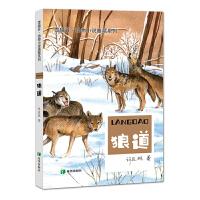 草原动物系列――狼道