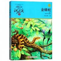 金蟒蛇(升�版)/�游镄≌f大王沈石溪品藏��系