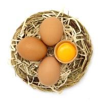 【湖北特产】宜昌特产 蛋之语 散养红壳蛋30枚 45克/枚 净重1350g 只发两天内新鲜鸡蛋