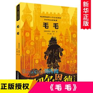 毛毛书籍 时间窃贼和一个小女孩的不可思议的故事 幻想文学小学三四五六年级的书青少年课外书8-12岁 班主任老师