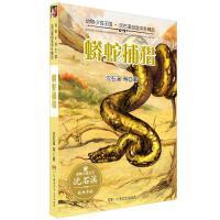 动物小说王国・沈石溪自选中外精品・蟒蛇捕猎
