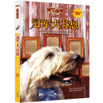 传世今典.动物小说5:冠军犬芬恩