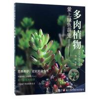 多肉植物/爱上绿色萌宠/华姨编著/简单养护/多肉入门必读/浙江科学技术出版社