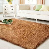 普润 滑加厚丝毛 客厅地毯 茶几地毯 卧室地毯 80*120咖啡色