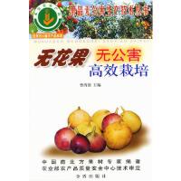 无花果无公害高效栽培――果品无公害生产技术丛书