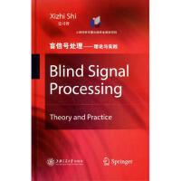 盲信号处理--理论与实践(精) 史习智