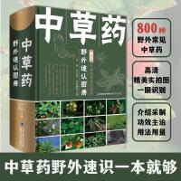 【2021新书】中草药野外速认图册 李斌 黄克南 中草药野外植物鉴别中国常见植物手册野外植物识别辨别