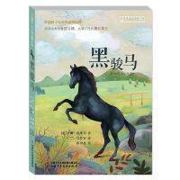 打动孩子心灵的动物经典――黑骏马