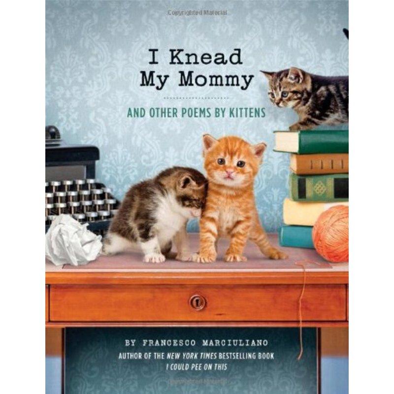I Knead My Mommy    ISBN:9781452132914