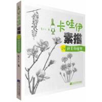 卡哇伊素描 24种美丽植物
