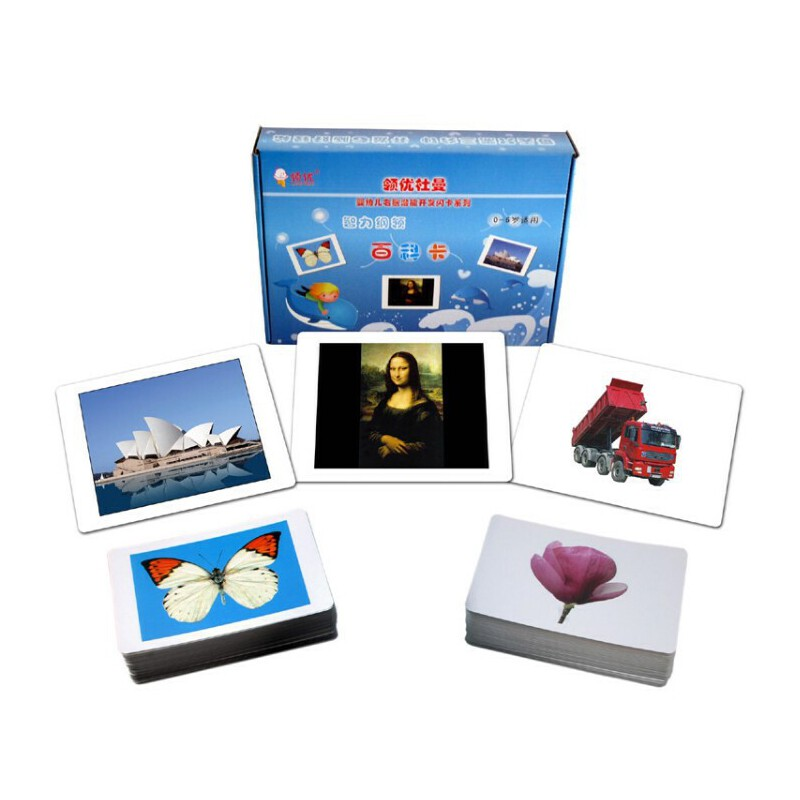杜曼 百科卡 闪卡胎教闪光卡片 含世界名画 早教全套装