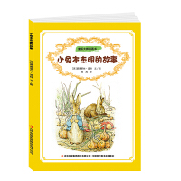 小兔本杰明的故事 童话大师图画书