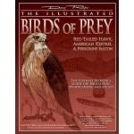 【预订】The Illustrated Birds of Prey: Red-Tailed Hawk, America