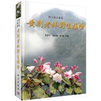 四川省古蔺县黄荆老林植物