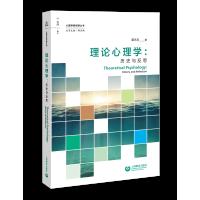理论心理学:历史与反思(心理学新视野丛书)