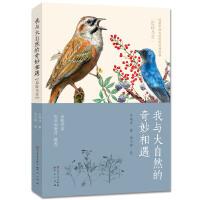 我与大自然的奇妙相遇:追踪鸟类