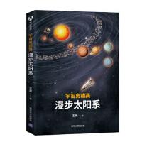 宇宙奥德赛:漫步太阳系 王爽 9787302509288 清华大学出版社