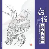 传统线描技法详解・白描禽鸟画法