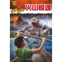 黑森林国际畅销书系―极限探险―火山惊魂