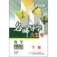 名师导学大课堂 化学九年级单元复习 下册 附手册6DVD
