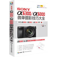 SONY α6300/α6000微单摄影技巧大全