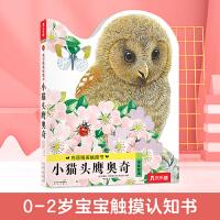 亮丽精美触摸书:小猫头鹰奥奇