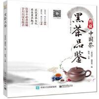 【电子工业社】黑茶品鉴