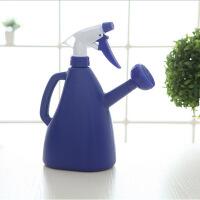 糖果色加厚双头两用洒水壶喷水壶园艺浇花浇菜用撒水壶喷雾器