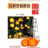 【二手旧书9成新】脐橙整形修剪图解 陈杰著 金盾出版社 9787508234281